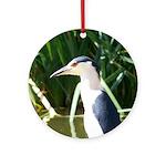 Black-crowned Night Heron Ornament (Round)