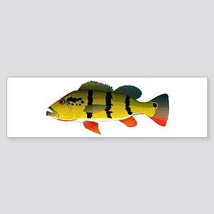 Peacock bass Bumper Sticker