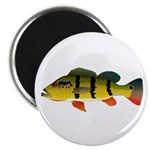 Peacock bass Magnets