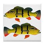 Peacock bass Tile Coaster