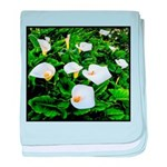 Field of Calla Lily Flowers baby blanket