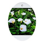 Field of Calla Lily Flowers Oval Ornament