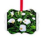 Field of Calla Lily Flowers Picture Ornament