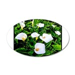 Field of Calla Lily Flowers Decal Wall Sticker