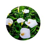 Field of Calla Lily Flowers Button