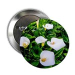 "Field of Calla Lily Flowers 2.25"" Button (10 pack)"