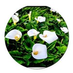 Field of Calla Lily Flowers Round Car Magnet