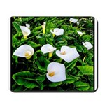 Field of Calla Lily Flowers Mousepad