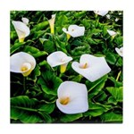 Field of Calla Lily Flowers Tile Coaster