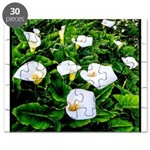 Field of Calla Lily Flowers Puzzle