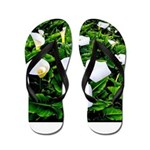 Field of Calla Lily Flowers Flip Flops
