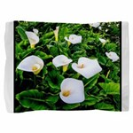 Field of Calla Lily Flowers Pillow Sham