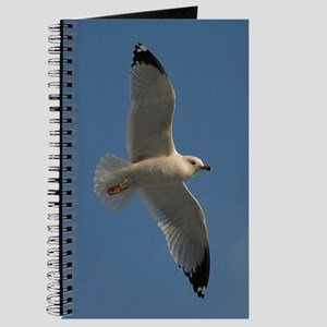 Seagull In Flight Journal