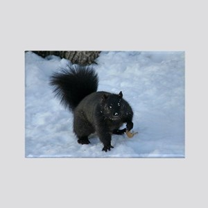 Black Squirrel In The Snow Rectangle Magnet