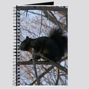 Black Squirrel In The Trees Journal