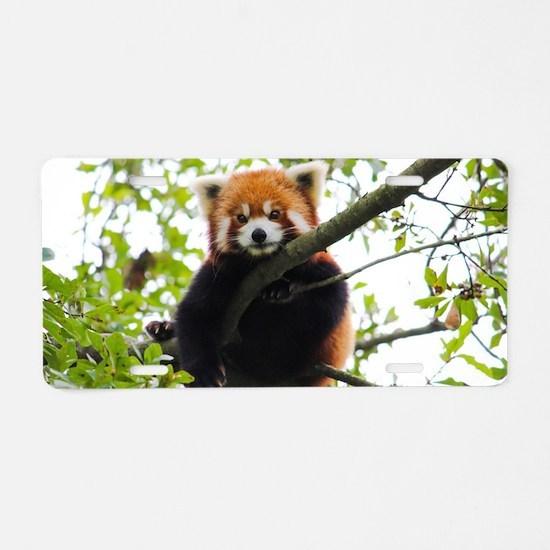 Cute Cute panda Aluminum License Plate