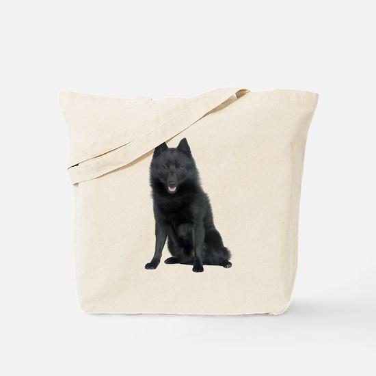 Schipperke Picture - Tote Bag