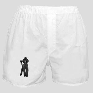 Poodle Picture - Boxer Shorts