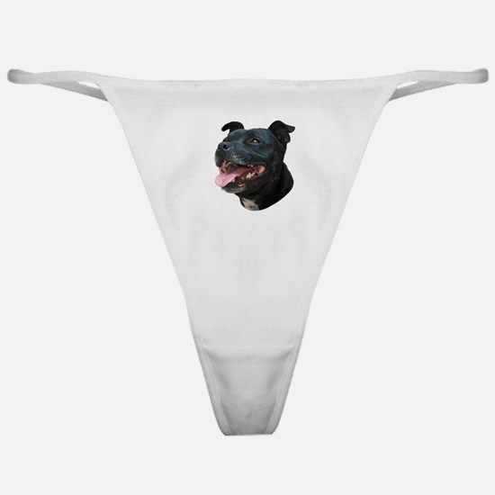 Pit Bull Picture - Classic Thong