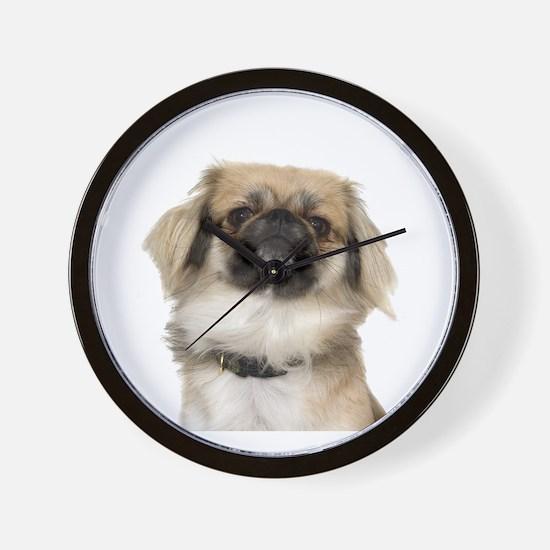Pekingese Picture - Wall Clock