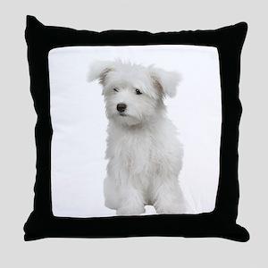 Maltese Picture - Throw Pillow