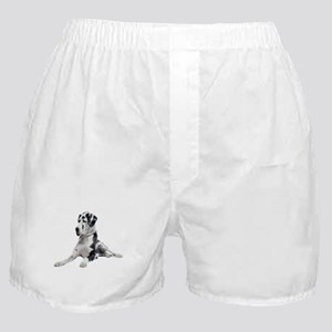 Great Dane Picture - Boxer Shorts