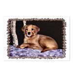 ...Puppy 01... Postcards (Package of 8)