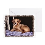 ...Puppy 01... Greeting Card