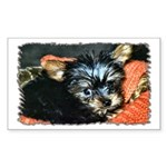 ...Yorkshire Terrier 01... Rectangle Sticker