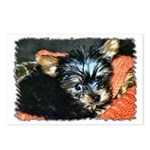 ...Yorkshire Terrier 01... Postcards (Package of 8