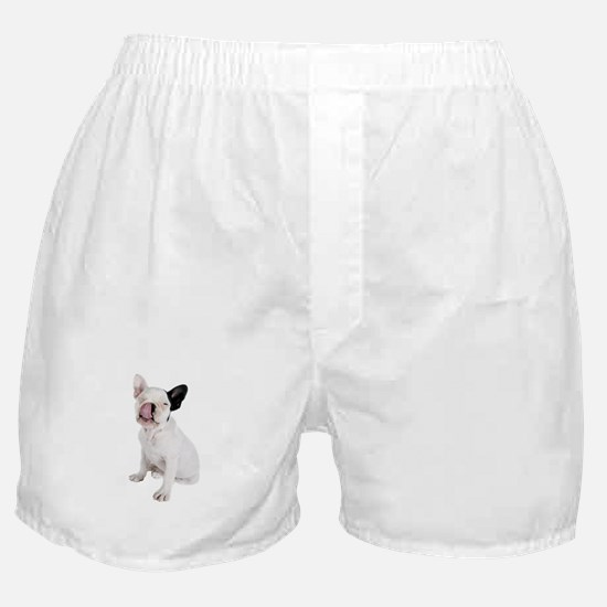 French Bulldog Picture - Boxer Shorts