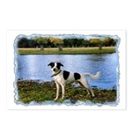...Dog 01... Postcards (Package of 8)
