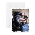 ...Dog 02... Greeting Cards (Pk of 10)