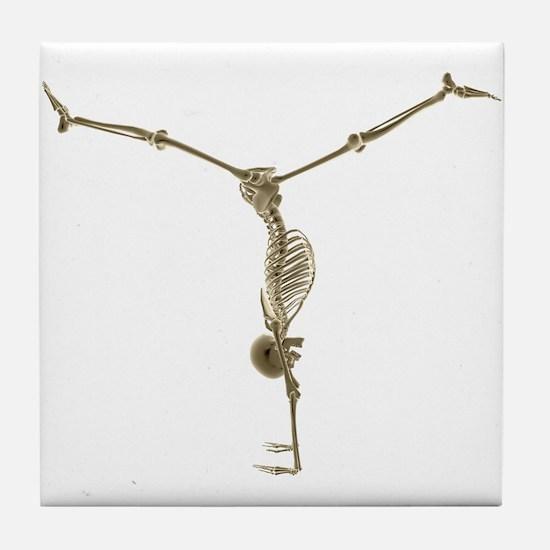 Skeleton Tile Coaster