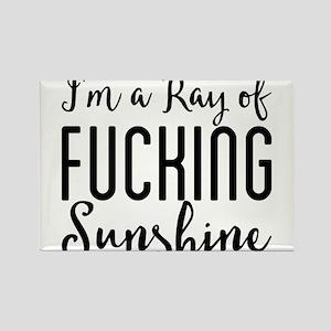 I'm a Ray of Fucking Sunshine Magnets