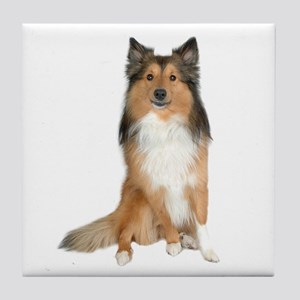 Collie Picture - Tile Coaster