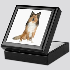 Collie Picture - Keepsake Box