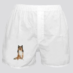 Collie Picture - Boxer Shorts