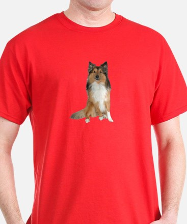 Collie Picture - T-Shirt