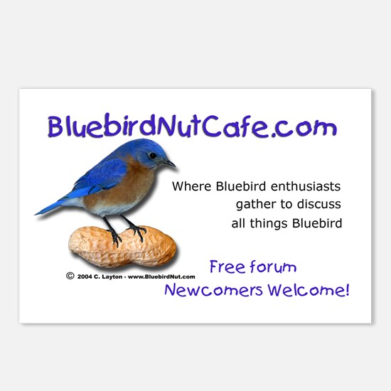 Bluebird Nut Cafe Postcards (Package of 8)