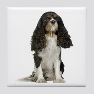 Cavalier King Charles Picture - Tile Coaster