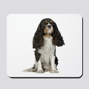 Cavalier King Charles Picture - Mousepad