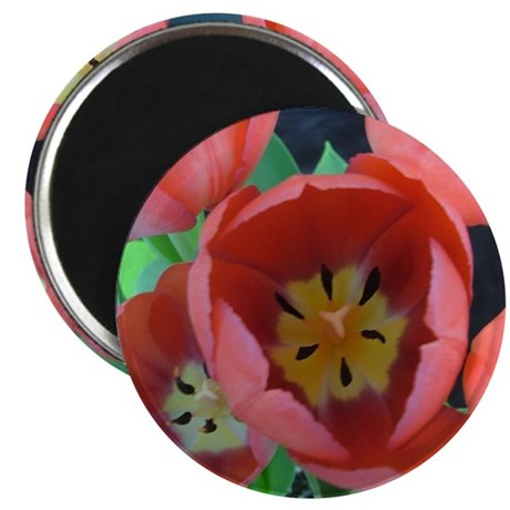Tulips - Abstract Photograph imprinted on a round