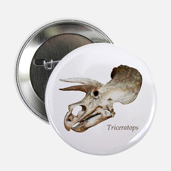 "Triceratops Skull 2.25"" Button"