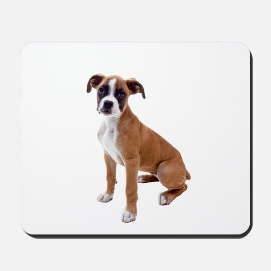 Boxer Picture - Mousepad