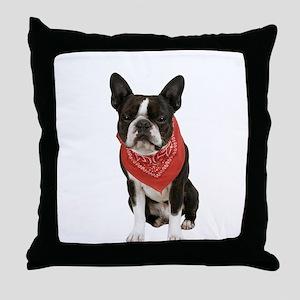 Boston Terrier Picture - Throw Pillow