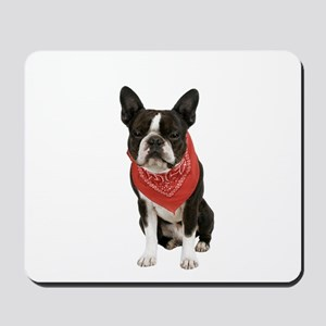 Boston Terrier Picture - Mousepad