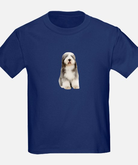 Bearded Collie Picture - T