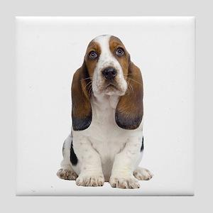 Basset Hound Picture - Tile Coaster