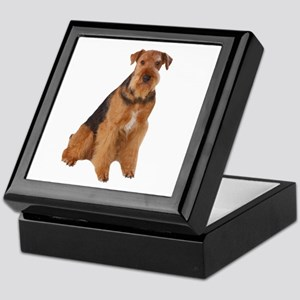 Airedale Picture - Keepsake Box
